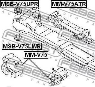 Febest MSB-V75LWR - Kinnitus,sillatala japanparts.ee