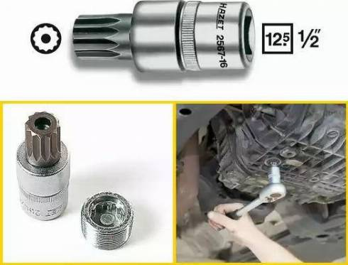 HAZET 2567-16 - Padrun,, õli väljalaskekruvi japanparts.ee